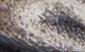 Standard_Grey_Tumbled